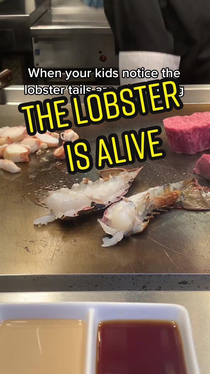 Video with title 'It's alive #bossbabybrody #lobster #lobstertail #lobstertails #rocklobster #wynnlasvegas #hibachi #summer #nobodytalktome #foodtiktok'
